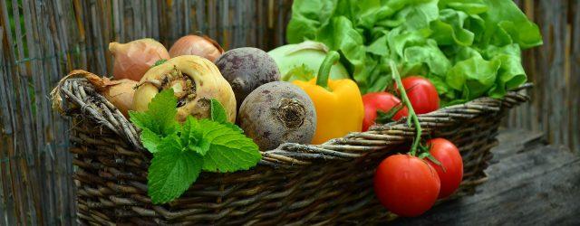 Idroponica per ortaggi: ecco cosa si può coltivare senza terra